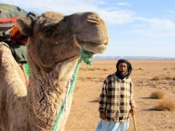 Guía berebere de la caravana