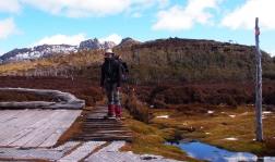 Mi barba y yo en Pelion Gap Tasmania