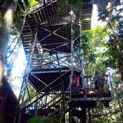 Canopy Tower - Daintree National Park (Australia)