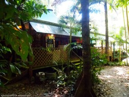 Cabaña en Daintree Crocodylus Village - Cairns (Australia)