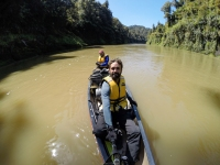 Canoas en Whanganui River - New Zealand