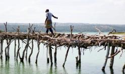Paisano cruzando el puente de madera - Lago Quissico (Mozambique)