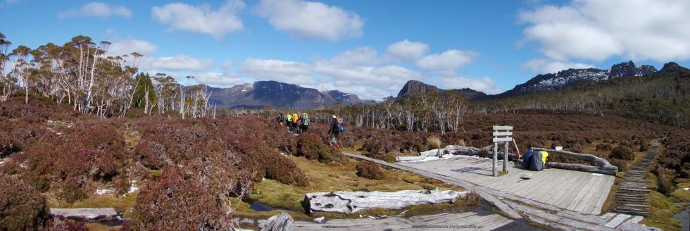 Collado Pelion en el Overland Track de Tasmania