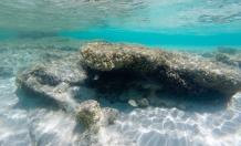 Fondos marinos de Formentera
