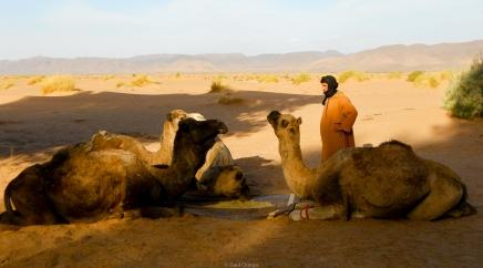 Marruecos-003