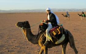 Mi barba en dromedario - Valle del Draa (Marruecos)