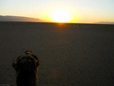 Atardecer en el valle del Draa (Marruecos)