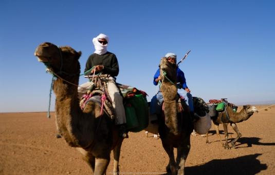 Nómadas del Sáhara en dromedario
