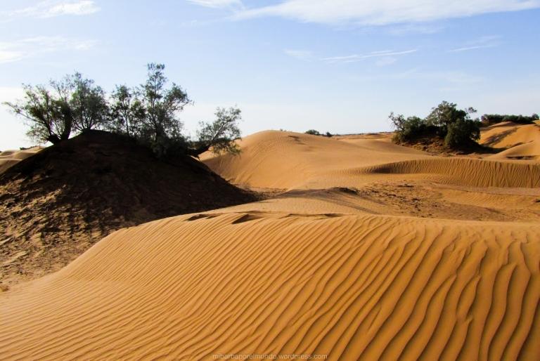 Dunas en el Sáhara