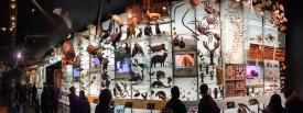Museo de Historia Natural - Nueva York