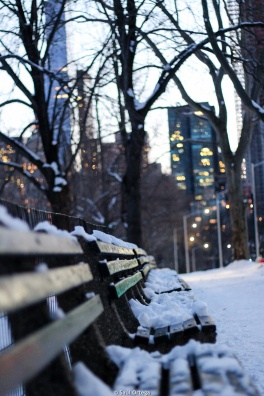 Nieve en Central Park