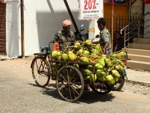 Vendo cocos
