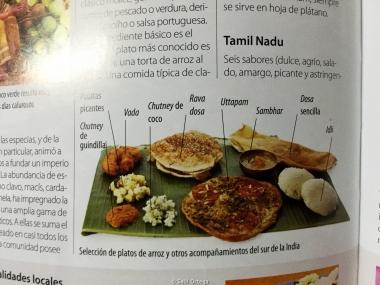 Platos que comimos en la comunidad: Idli,Sambhar,Dosa,Vada, y arroz, mucho arroz
