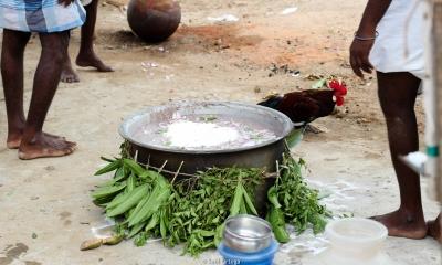 Perolo con la comida que compartirán en la Festividad de Shiva