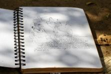 Bocetos y diseños