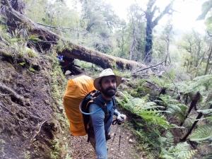 Terrenos complicados en el Hollyford Track - New Zealand