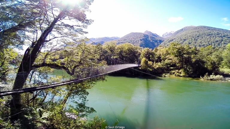 Puentes más que largos para ponernos a prueba - Hollyford Track - New Zealand