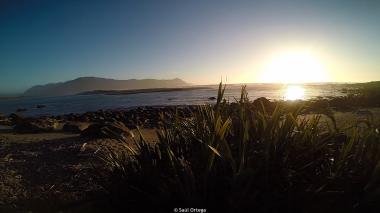 Martins Bay - Hollyford Track - New Zealand