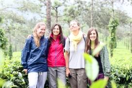 Las chicas entre las plantas de té - Kerala - India