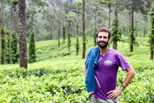 Mi barba en una plantación de té - Kerala - India