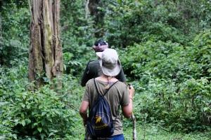 La ruta atraviesa el parque nacional Periyar a través del tiger trail - Kerala - India