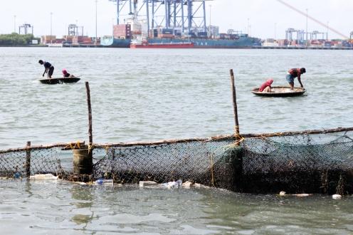 Pescadores en Kochi - Kerala - India