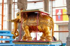 Elefante frente al Templo de Kapaleeshawarar en Chennai - India