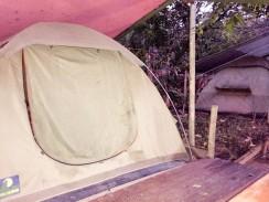 Tiendas con cama en Lazycow Backpackers